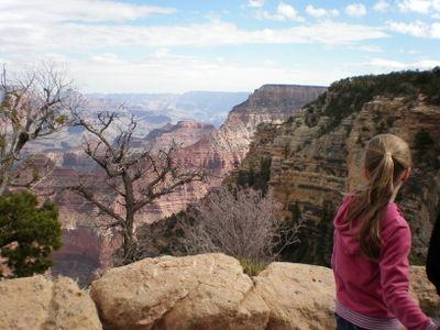 November9 Grand Canyon 017